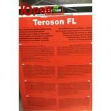 Teroson VR 10 (Teroson Reiniger FL)